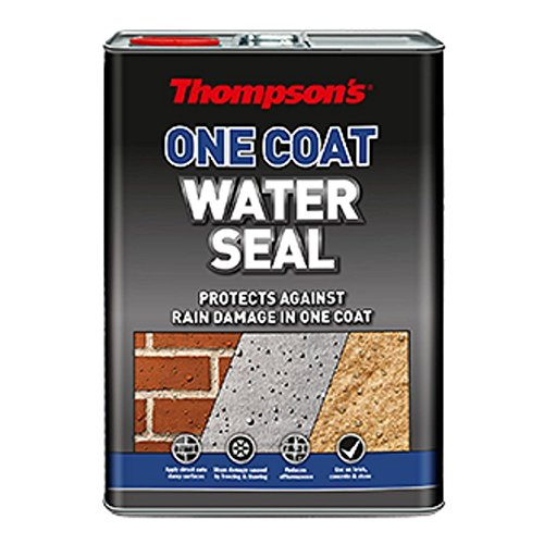 TWSU5L Thompson's One Coat Water Seal vernice impermeabilizzante, 5L