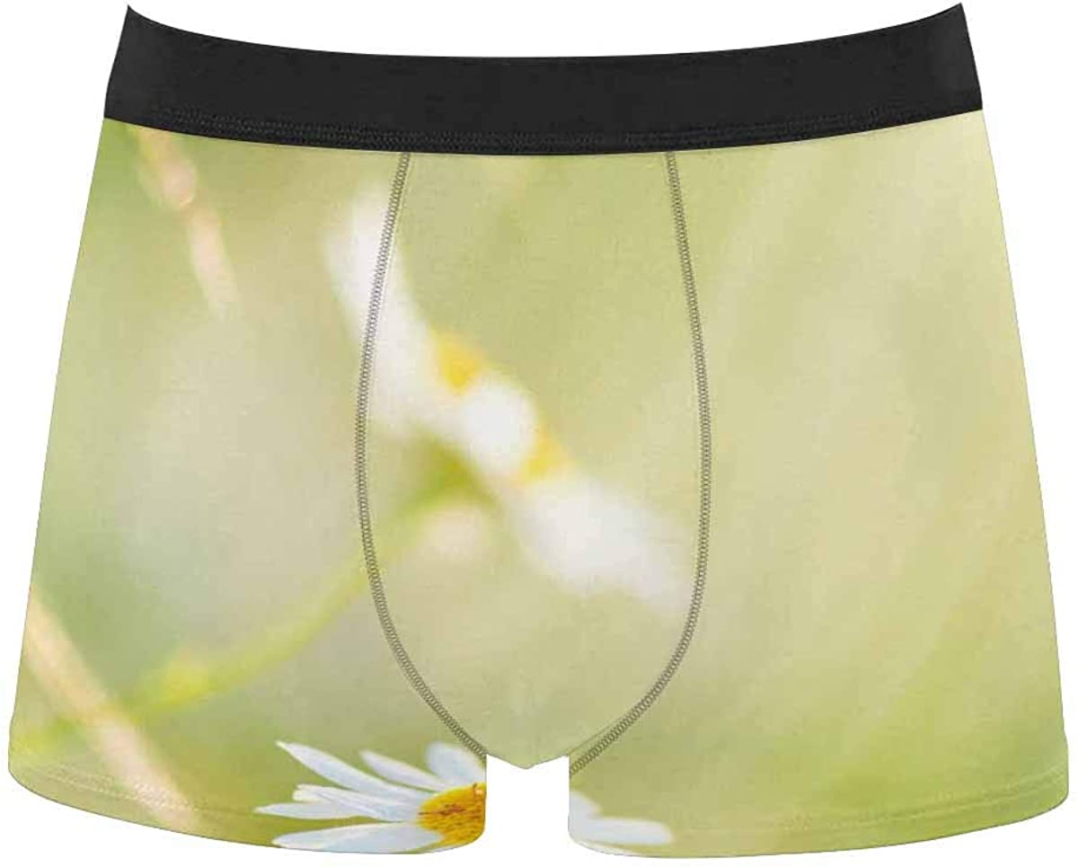InterestPrint Men's All Over Print Boxer Stretch Underwear Shorts Underpants Cartoon Fast Food