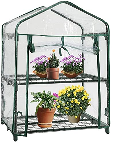Livingshire 2 Tier Plastic Greenhouse with Frame and Cover | Plastic Two Shelves Mini Growhouse | Portable Green House for Garden, Small Backyards, Patio | 2 Tier Greenhouse with PVC Cover…