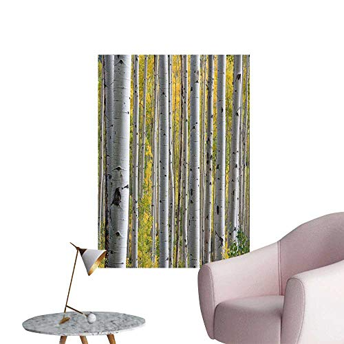 SeptSonne Wall Art Prints Thick Birch Trees for Living Room Ready to Stick on Wall,32' W x 60' L