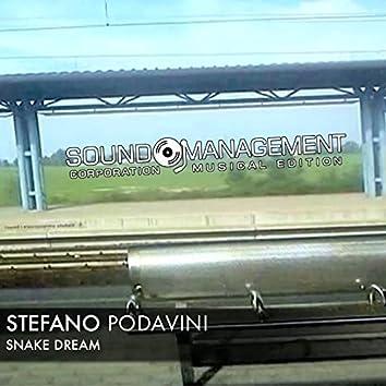 Snake Dream