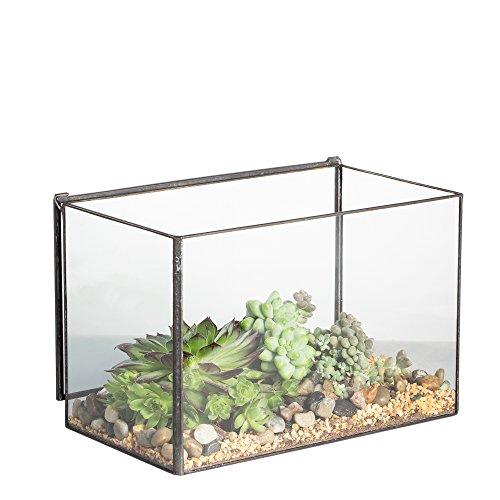 NCYP Rectangle Cuboid Desk Clear Glass Geometric Terrarium Box with A Lid Tabletop Succulent Air Plant Moss Fern Planter Black Flower Pot 4 x 4.87 x 6.75 inch(No Plants)