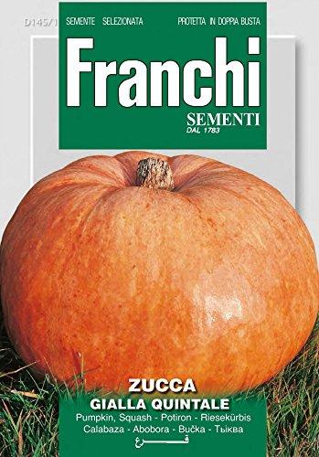 Franchi Sementi DBO145-1 Riesenkürbis Gialla Quintale (Kürbissamen)