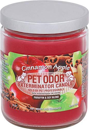 Pet Odor Exterminator Cinnamon Apple Candle - 13 oz, Pack of 2