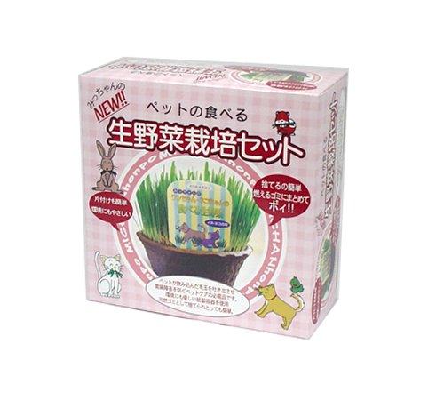 みっちゃんホンポ ペットの食べる生野菜 栽培セット