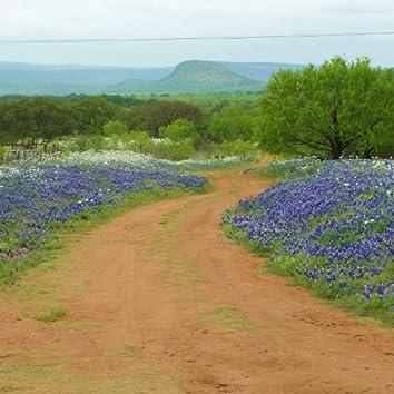 If You Ever Go to Texas - Live!