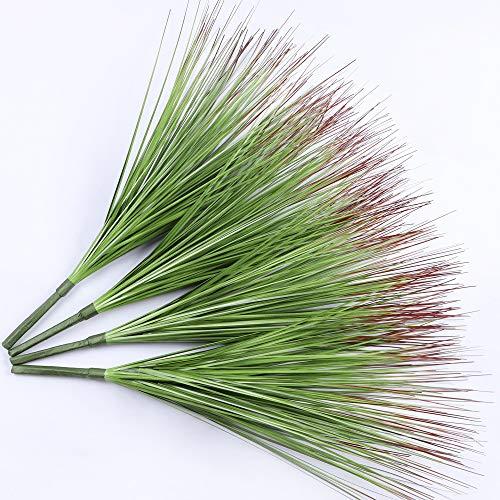 Famibay Plantas