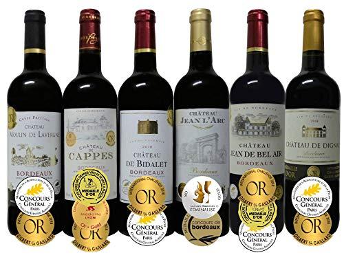 ALL金賞受賞(ダブル・トリプル金賞入) 赤ワイン6本セット フランス ボルドー産 ソムリエ厳選 750ml×6本