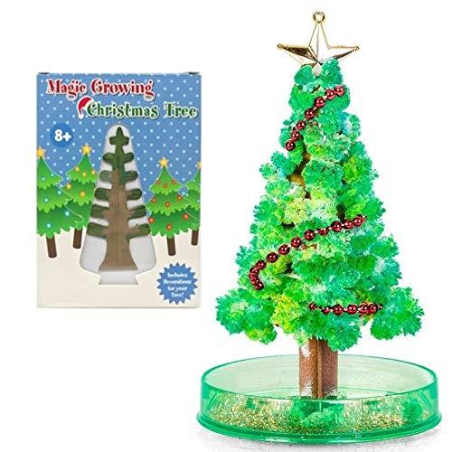 Playwrite Magic Growing Christmas Tree