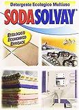 Sodasolvay - Detergente, Ecologico, Multiuso - 1000 g - [confezione da 2]...