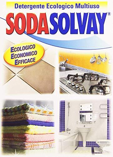 Sodasolvay - Detergente, Ecologico, Multiuso - 1000 g - [confezione da 2]