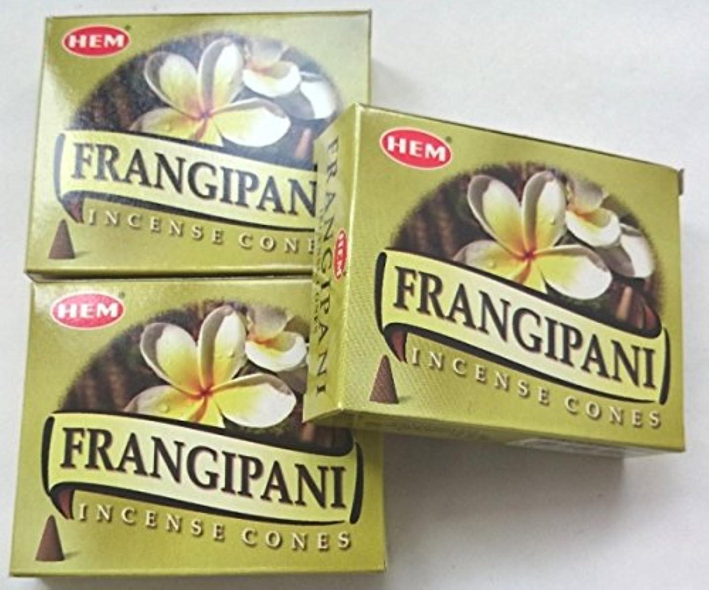 苗収容するベギンHEM(ヘム)お香 フランジパニ コーン 3個セット