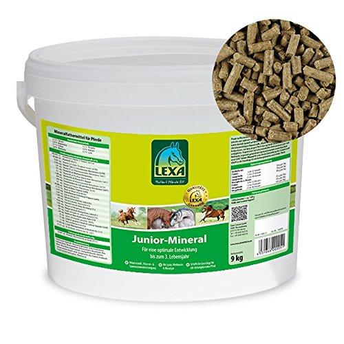 Lexa-Junior-Mineral 25 kg
