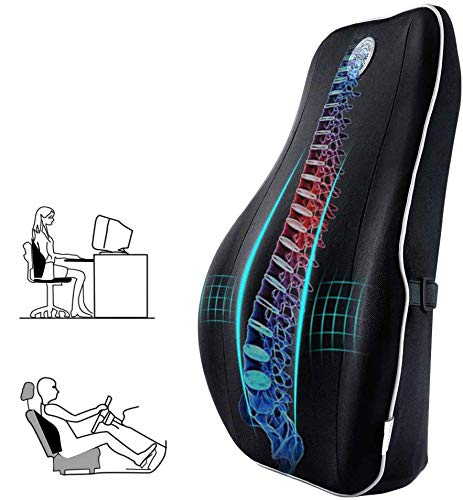 Gugusure Lumbar Support for Office Chair, Memory Foam Back Cushion with Breathable Mesh Cover for Car Seat,Orthopedic Backrest for Low Back Pain Relief