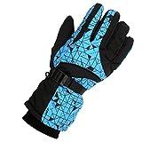 Generic Men's Winter Waterproof Windproof Ski Snow Snowboarding Gloves - Blue, Approx 29cm/11.4inch Length