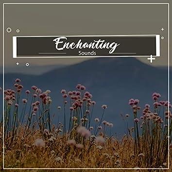 #18 Enchanting Sounds for Zen Relaxation & Meditation