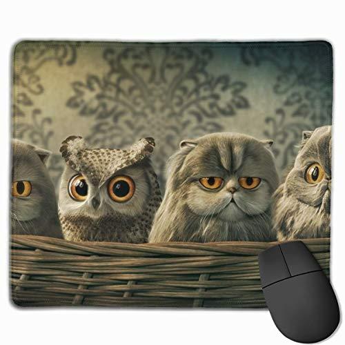 Rutschfeste Gummibasis Mousepad für Laptop-Computer PC Persönlichkeitsdesigns Gaming Mouse Pad Mat (Süße Eule infiltrieren Katzenkorb,)