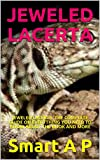 JEWELED LACERTA: JEWELED LACERTA: THE COMPLETE GUIDE ON EVERYTHING YOU NEED TO KNOW ABOUT THE BOOK AND MORE (English Edition)