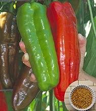 Mr.seeds 100 Giant pepper seeds --Marconi Peppers -DIY Home Garden Vegetable Plant good taste