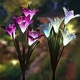 Simulación Linterna Jardín Colocación Luz Solar Led Decoloración Lily...