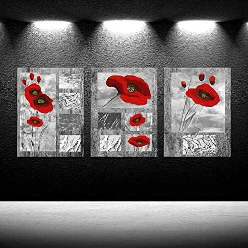 iKNOW FOTO 3 Piece Abstract Canvas Prints Red Poppies Flowers on Gray Modern Giclee Framed Canvas product image