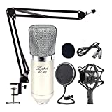 Zabel Condenser Microphone Bundle, RC02 Mic Kit with Adjustable Mic Suspension Scissor Arm