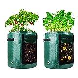 confezione da 2 sacchetti per la coltivazione di patate – 10 galloni da giardino per coltivare pomodoro verdure traspiranti durevoli, con finestra e manici per carote, pomodori, cipolla (verde scuro)