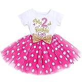 Recién nacido bebé 1/2/3 cumpleaños niña vestido manga corta algodón body Minnie Mouse Polka Dot Tul Princesa Fiesta Cake Smash Baby Set Photo Shooting cumpleaños vestido Hot Pink-2nd 2 Años