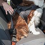 Sicherheitsgurt Hund ausziehbar / Auto Sicherheitsgeschirr für mittlere und große Hunde / Hunde Anschnallgurt - 3