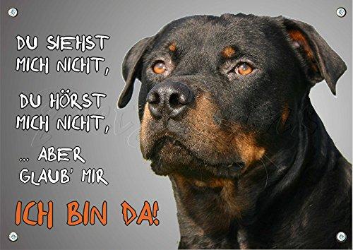 Petsigns Rottweiler - Hundeschild aus Metall - rostfreies Warnschild in TOP Qualität, DIN A5