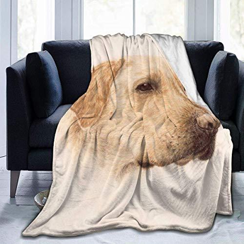 Moily Fayshow Labrador Amarillo Lab Dad Charm Art Fleece Throw Blanket Franela Edredón Dormitorio Ropa de Cama Decoración 50 'X40'