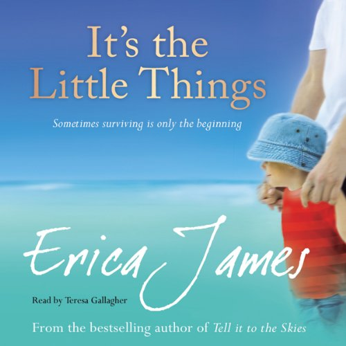 It's The Little Things audiobook cover art