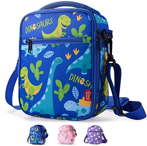 Boys Lunch Box Insulated lunch Bags for Kids Lunch Cooler Thermal Meal Lunch Tote Bag with Shoulder Strap and Pocket Cute Dinosaurs, Practical Gift