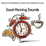 Alarm Clock 5: Wake Up and Be Happy