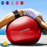 arteesol Pelota de Ejercicio 45cm 55cm 65cm 75cm Balón de Ejercicio Pelota de Pilates Anti-explosión con Bomba para Nacimiento Gimnasio Yoga Pilates Entrenamiento Terapia física