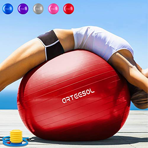 arteesol Exercise Ball 45cm / 55cm / 65cm / 75cm Anti-burst Anti-slip...