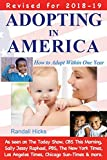 Image of Adopting in America: How to Adopt Within One Year (2018-2019)