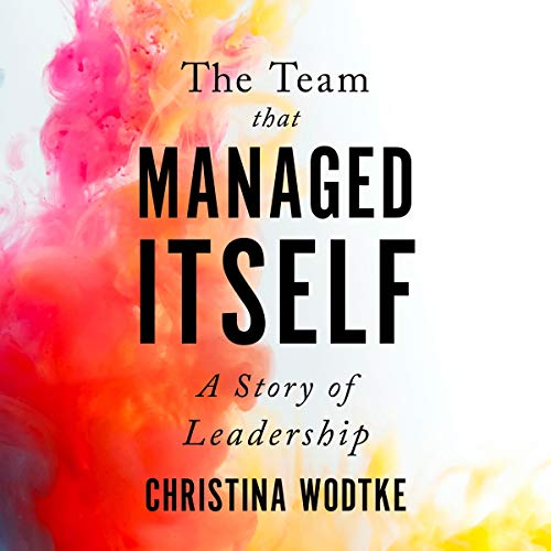 The Team That Managed Itself: A Story of Leadership cover art