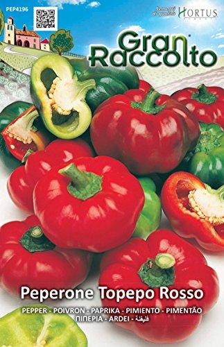 Hortus 40PEP4196 Gran Raccolto Peperone Topepo, Rosso, 13x0.4x20 cm