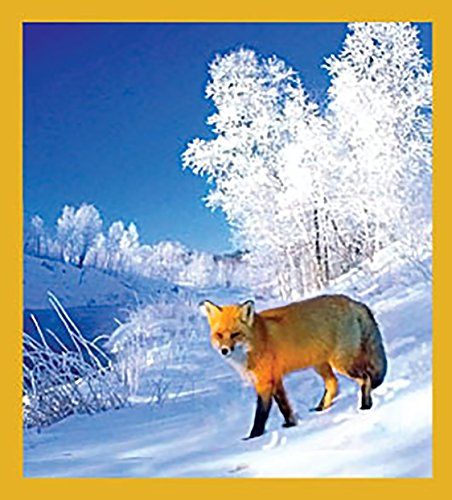 Gift Trenz Red Fox in Winter Magnetic Bookmark
