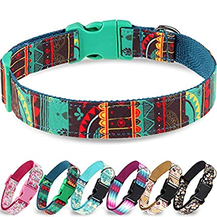 Taglory Collar Perro Ajustable,Estilo Único Collar Adiestramiento para Perros Medianos,35-50cm Verde Oscuro
