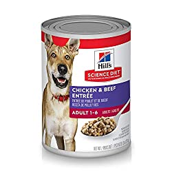 Best low-fat canned dog food