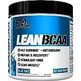 Evlution Nutrition LeanBCAA, BCAA's, CLA y L-Carnitina, Recupera y Quema Grasa, Libre de Azúcar y Gluten, 30 Porciones (Blue Raz)