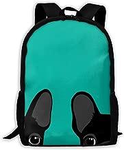 Boston Terrier and French Bulldog Laptop Bookbag, Viaje en Bolsa de Negocios, Waterproof Anti-Theft Unisex Classic Lightweight College Schoolbag Fits 15-Inch Mochila de la computadora