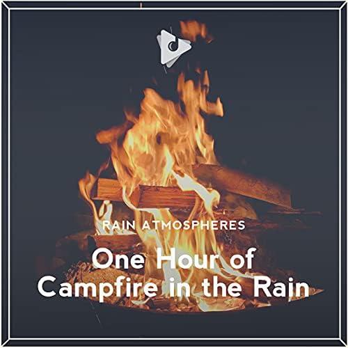 Rain Atmospheres & Rain Sounds ASMR