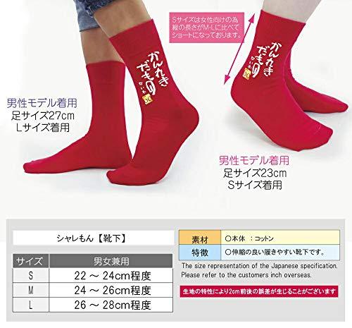 /DMTS/名入れ還暦祝い【かんれきだもの】【赤靴下】【L】