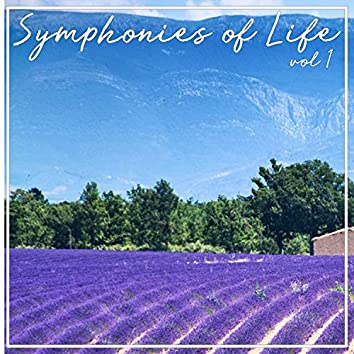 Symphonies Of Life, Vol. 1 - Handel: Overtures