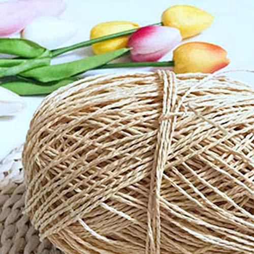 BBZ 200 g/Lote Hilo orgánico para Tejer Hilo de Cuerda de Paja de Rafia Hilo de Ganchillo sólido para Sombreros Hechos a Mano cestas artesanías, Beige