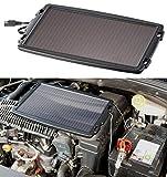 REVOLT Solar Batterieladegerät: Solar-Ladegerät für Auto-Batterien, 12 Volt, 2,4 Watt (Solar Ladegeräte für Autobatterien)