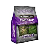 Pennington One Step Complete Dense Shade 5 lb